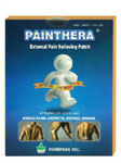 Painthera External Pain Relieving Patch small size